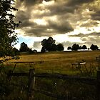 Field Over The Fence by RoughCutMatt