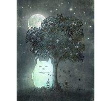 Full Moon Spirit  Photographic Print