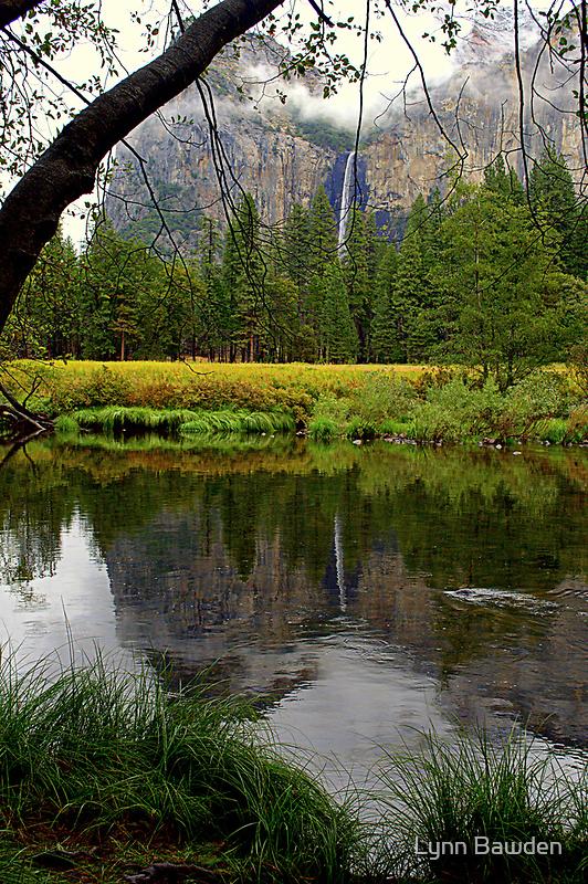 """""""A Fall Reflection"""" by Lynn Bawden"""
