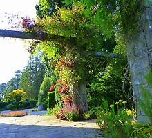 Peace In An Irish Garden by Fara