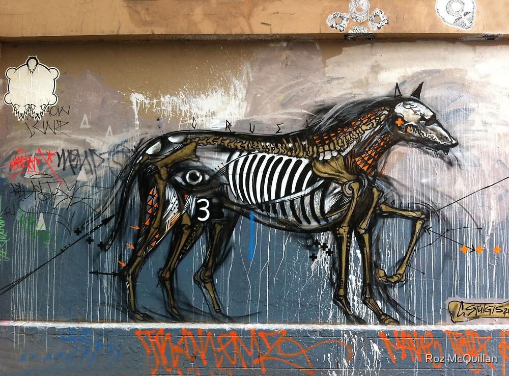 Graffiti, Hosier Lane, Melbourne by Roz McQuillan