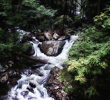 Cloudland Falls River by donnau