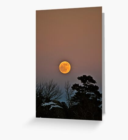 Wolf Moon Greeting Card
