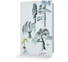Tree Evolution Greeting Card