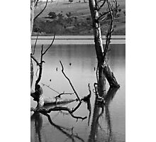 Reflections in Black and White Photographic Print