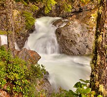Wallace Falls Rapids by Dale Lockwood