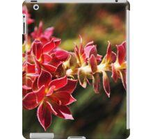 Wild-flower in Fitzgerald River National Park iPad Case/Skin