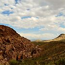 Red Rock Canyon by Roxanne Persson