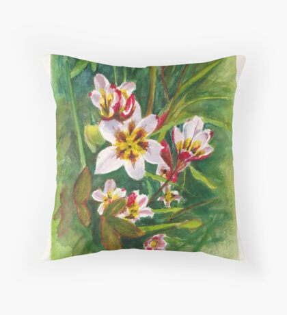 Sparaxis flowers in the Hellebore patch Throw Pillow
