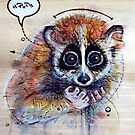 Slow Loris by Fay Helfer