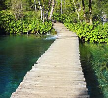 Wooden Pathway in Plitvice Lakes by kirilart