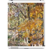golden hickory in woodland path iPad Case/Skin