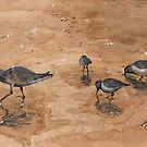 Pfieffer Beach Sandpipers by Diana Cardosi-Bussone
