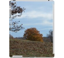 Autumn Farm Landscape iPad Case/Skin
