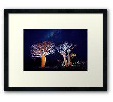 The Boab Garden at Midnight Framed Print
