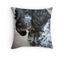 Alice the springer spaniel (2) Throw Pillow