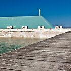 Newcastle Ocean Baths by Liz Percival