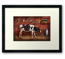 Animal - The Cow Framed Print