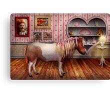 Animal - The Pony Canvas Print