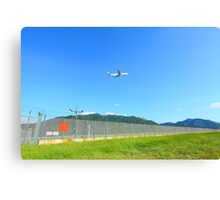 Airplane fly over grasses at day time Canvas Print