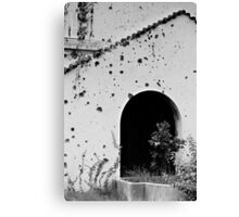 Bullet holes Canvas Print