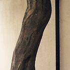 Curvy Tree Trunk by Jane Underwood