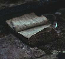 all they left behind was a book by AnoukDyonne