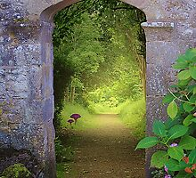 Through The Archway by Christine Lake