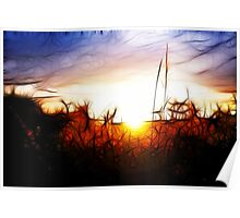 Abstract Sunset Poster