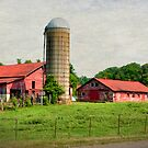 For the Love of Barns by LarryB007