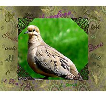 HARMLESS AS DOVES Photographic Print