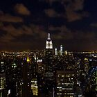 Empire State Panorama at Night by mikeyg2000