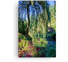 Willow. Canvas Print