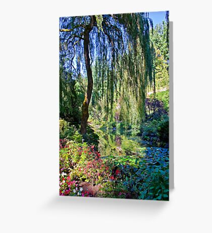 Willow. Greeting Card