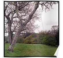 Tree Swing Landscape Poster