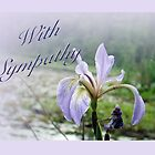 Sympathy Greeting Card - Wild Blue Flag Iris by MotherNature