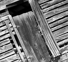 Barn Door with Transom Window by Jean Gregory  Evans