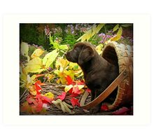 Wow!  Really pretty out here! Art Print