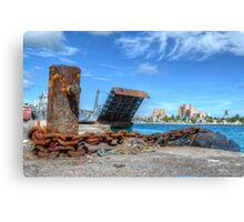 Rat view from the dock Canvas Print