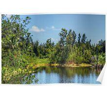 The lake at Paradise Island in Nassau, The Bahamas Poster