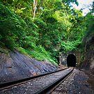 Cumberland Gap Train Tunnel by Jimmy Phillips
