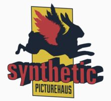 Synthetic PictureHaus by Ryan Martin