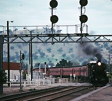 Excursion train coming into Wodonga Railway station 19810300 0006 by Fred Mitchell