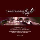Transcendent Light by evap