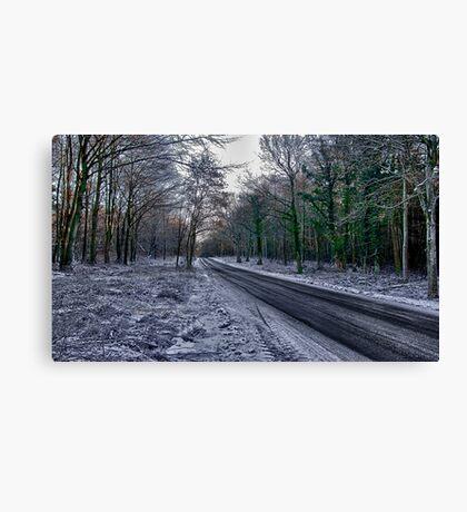A Winters Scene Canvas Print