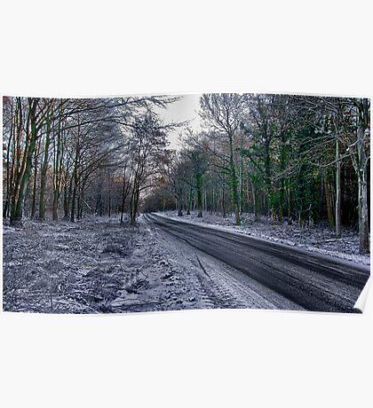 A Winters Scene Poster
