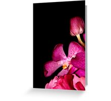 Fifty Shades of Magenta Greeting Card