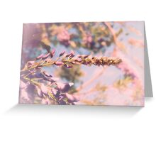 wistful wisteria Greeting Card