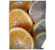 Cool Citrus Poster