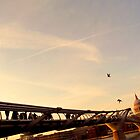 Millenium Bridge at sunset by Federica Gentile